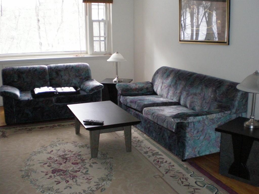 Le salon. On ne s'en sert pas beaucoup...sûrement parce que les canapés sont, en plus d'être laids, très inconfortables.