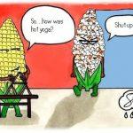 Flexion et réflexion sur le yoga chaud