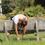 Bench hopping Waiheke