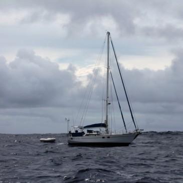 Journal de bord #7 : Sauvetage en haute mer !