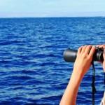 Journal de bord #10 : Le mystérieux récif Minerva
