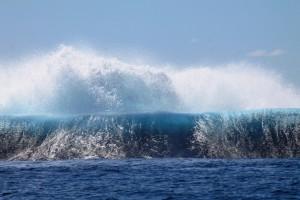 Pas si petites, ces vagues!