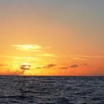 Journal de bord #11 : Dimanche c'est repos