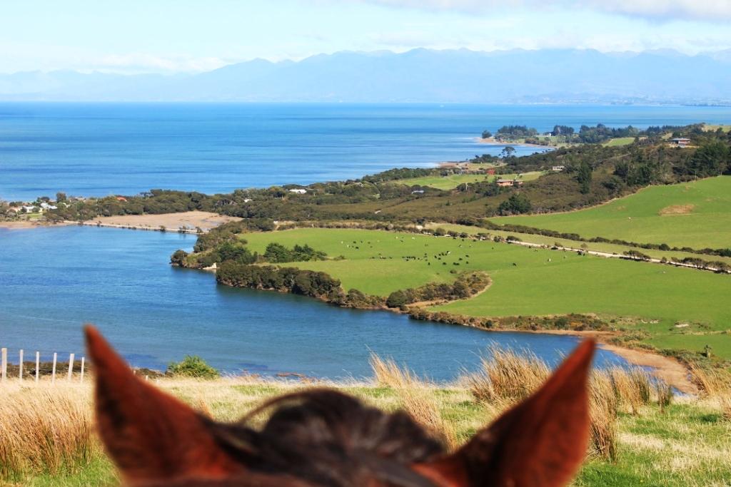 Trek au Cap Farewell, Nouvelle-Zélande